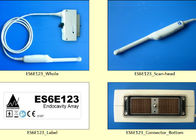 Esaote Compatible Ultrasonic Transducer Probe Scan - Head New Ultrasound Replacement